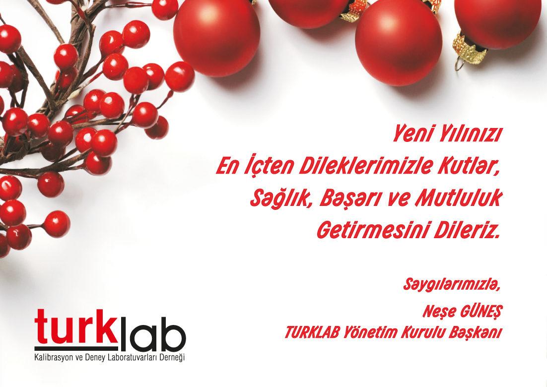 Turklab_yeni_yil_2017.ai